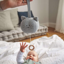 Knitted Musical Little Chums cat(7329.002)